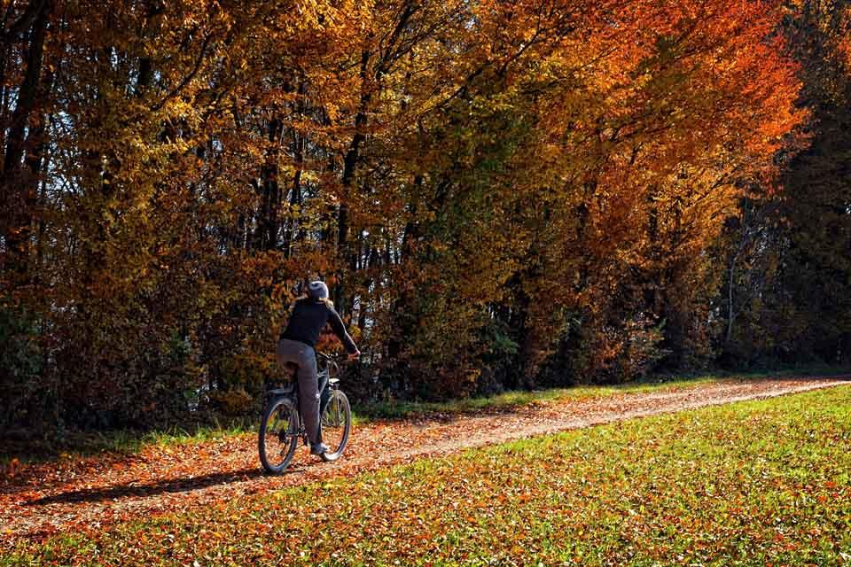 autumn-1036744_1920